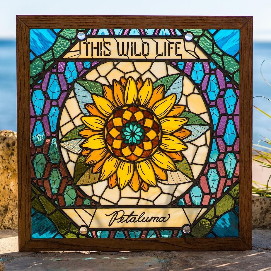 this wild life petaluma portada